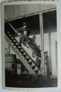 Fotografía Frente De Busevac, Croacia. Alemania. II Guerra Mundial. 25-2-1944. - 1939-45