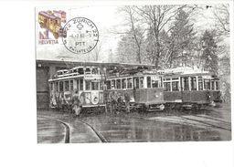 17035 - Carte Maximum  Trains Zürich 22 4.02.1988 Winterstimmung Im Depot (format 10X15) - Trains