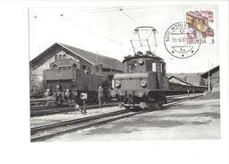 17040 - Carte Maximum Suisse Trains Wohlen 1987 (format 10X15) - Trains