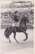 CORRIDA  BORDEAUX ? -( Alvaro DOMECQ )---photo  P. LACARIN  BORDEAUX--voir 2 Scans - Corrida