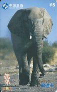 éléphant Elephant Animal Télécarte  Phonecard  Karte (S.272) - Chine