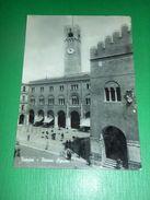 Cartolina Treviso - Piazza Signori 1951 - Treviso