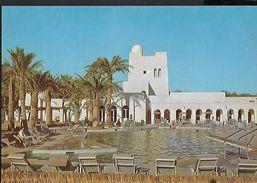 ! -  Algérie - Touggourt - Piscine De L'Hôtel Oasis - Algérie