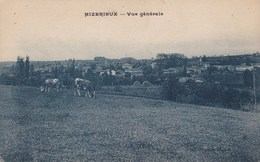 MIZERIEUX  VUE GENERALE (dil306) - Autres Communes