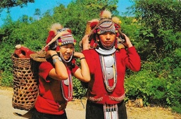 Thaï Hill Tribe (Ekoh) Carrying Their Produce To The Market, North Thaïlande - Thailand