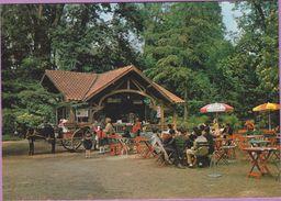 65 °° TARBES - Le Chalet-Bar Du Jardin Massey   ***  NEUVE - Tarbes