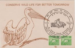 India  1994  Birds  Conserve Wild Life  HYDERABAD Special Card # 89450  Inde Indien - Cranes And Other Gruiformes