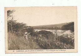 Cp , SENEGAL , LAMPSAR , Près SAINT LOUIS , Une échappée Sur Le MARIGOT , Vierge , Ed : E. Lagrange - Senegal
