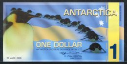 443-Antartica Billet De 1 Dollar 2008 Neuf - Autres - Océanie
