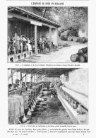 L'ESSENCE De ROSE En BULGARIE   1903 - Fragrances