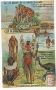 Chromo Liebig  Archipel Bismarck Nlle Pomeranie Volcano Pere Et Fils Casoar Porcelaine Coquillage Monnaie Nude Fetichism - Papua New Guinea