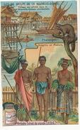 Chromo Liebig  Phalanger Petauroide  Negrito Malais Nude Men And Women - Papouasie-Nouvelle-Guinée