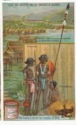 Chromo Liebig  Granville Paradisier Nude Men And Women Piercing Papua New Guinea - Papouasie-Nouvelle-Guinée