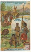 Chromo Liebig Iles Salomon Port Adam Musiciens Ile Buka Ornithorynque - Salomon