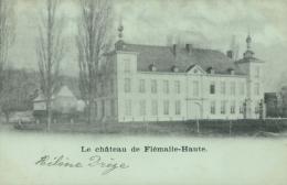 BE FLEMALLE / Le Château De Flemalle Haute / - Flémalle