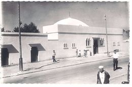 Cpsm Algérie, Rovigo - La Mosquée - Algérie