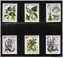 POLAND 1980 MEDICINAL PLANTS FOR HEALING NHM Flowers Herbs - Medicine