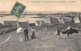 29-ILE DE BATZ- VUE GENERALE PRISE DU SEMAPHORE - Ile-de-Batz
