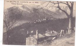 CARD ANDRATE (TORINO) -FP-V-2-0882-27416 - Italia
