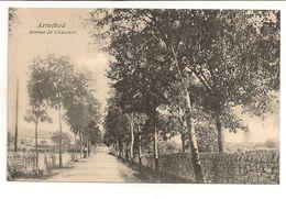 FRANCE/CPA  D'ARINTHOD / AVENUE DE CHACOURT - Otros Municipios