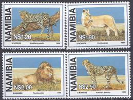 NAMIBIE - Félins - Félins