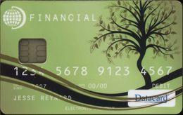USA - Chip - Datacard - Financial - Demo - MINT - Etats-Unis