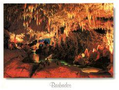 (308) Barbados - Harrison's Cave - Barbados