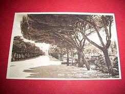 Cartolina Trani - Viale Della Villa Comunale 1930 Ca - Bari