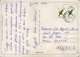 Kenya Postcard. Via Macedonia.nice Stamps -birds - Kenya