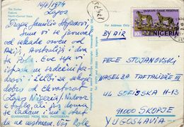Nigeria Postcard. Via Macedonia.nice Stamp Animals - Nigeria