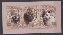 Zaire Cats Chat Imperf - Hauskatzen