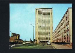 59-  LOOS - Nord- Les Oliveaux - Tour Kennedy - Cpsm  - Recto Verso  Paypal Sans Frais - Loos Les Lille