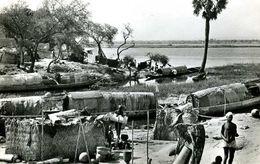 Niger : Niamey La Vie Des Pêcheurs - Niger