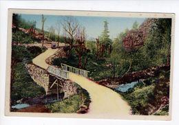 1 Cpa Carte Postale Ancienne -  Saint-chély-d'apcher- St-chély-dapcher - Tatula Et Ses Rochers -pont Rustique - Saint Chely D'Apcher