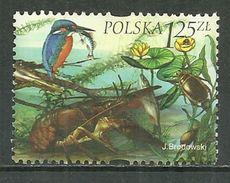 POLAND Oblitéré 3853 Faune Flore Lac Marais Rivière Martin Pêcheur Poisson Oiseau - 1944-.... République