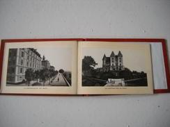 PAU (64) - (10 Vues En Dépliant Accordéon Sous Livret Carton Fort) - Dépliants Touristiques