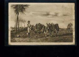 CPA  Erythrée               1935   Colonie Italie - Erythrée