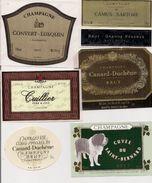 Etiquette - Lot De 6 Champagne - Cuillier, Convert-Lusquin, Camus-Sartore, Canard-Duchêne, Cuvée Du St-Bernard - Collections & Sets