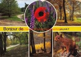 Bonjour De Jalhay - Jalhay - Jalhay
