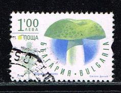 Bulgarien 2014, Michel# 5132 O Russula Wirescens - Bulgaria