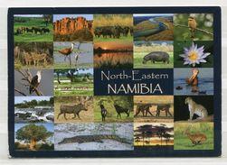 North-Eastern Namibia - Mehrbildkarte - Gel. 2016 - Fotos: Claudia & Wynand Du Plessis - Namibia
