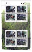 Comores 2009, WWF, Bats, 4val X2 In Sheetlet - Unused Stamps