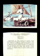 18321-image-1168      Série éducative éponge Tunisie - Géographie