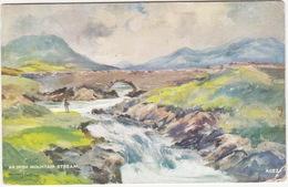 An Irish Mountain Stream (by William J Burrows)  -  (Ireland) - Ierland