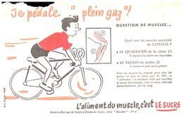 (D 8)   Buvard    Question De Muscles LESUCRE - Blotters