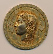 Médaille - Exposition (philatélique) Régionale MARTIGUES 1978 - France