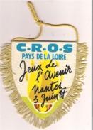 Fanion écusson C.R.O.S Pays De La Loire ( Jeux De L'avenir Nantes 1987 ) - Ecussons Tissu
