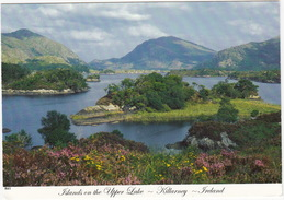 Islands On The Upper Lake - Killarney - (Ireland) - Kerry
