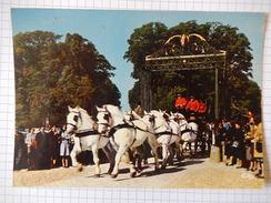 CPSM (61) - LE HARAS DU PIN - SORTIE D'ATTELAGE UN JOUR DE FETE -  CHEVAL - C1968 - PHOTO VERITABLE - R3742 - Horses