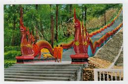 C.P. PICCOLA    DRAGON  STAIRCASE  DOI SUTHEP CHANGVAD  CHIENGMAI   2  SCAN   (VIAGGIATA) - Tailandia